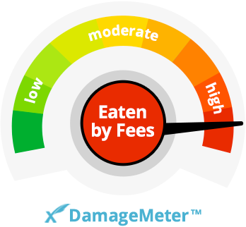 FeeX Damage Meter